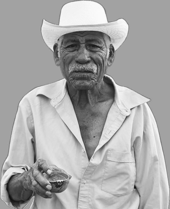 Mezcal agave expert